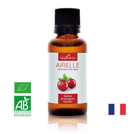 AIRELLE - Macérat de bourgeons BIO