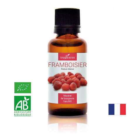 FRAMBOISIER - Macérat de bourgeons BIO