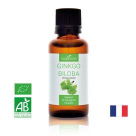 GINKGO BILOBA - Macérat de bourgeons BIO