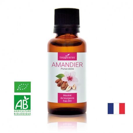 AMANDIER - Macérat de bourgeons BIO