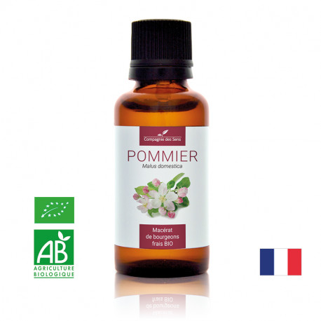 POMMIER - Macérat de bourgeons BIO