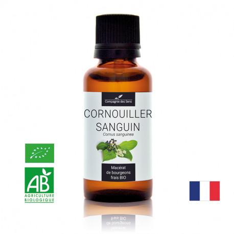 CORNOUILLER SANGUIN - Macérat de bourgeons BIO