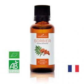 SORBIER - Macérat de bourgeons BIO