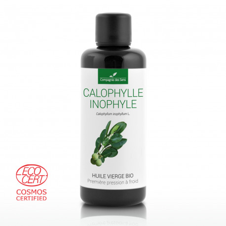 Huile végétale de Calophylle Inophyle BIO